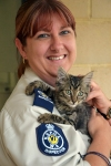 Inspector Kylie and rescued kitten
